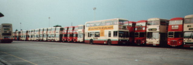 Buses ready to go June 2000 (19739 bytes)